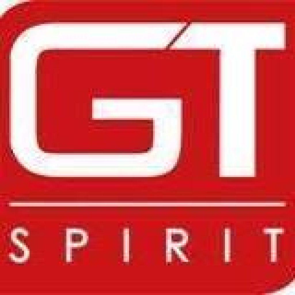 logo-gt-spirit-boisse.jpg
