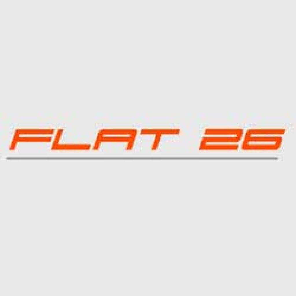 logo-flat-26-911andco.jpg