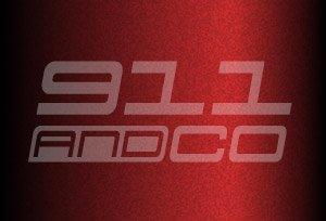 couleur chataigne 8B1 m3w carmonarot porsche 911 996 2004