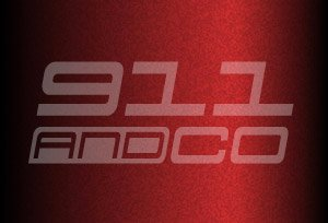 couleur chataigne 8B1 m3w carmonarot porsche 911 996 Turbo 2004