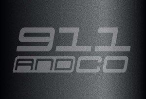 couleur gris kerguelen 6B4 6B5 Y1 sealgrau porsche 911 996 Turbo 2001 2004