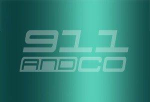 couleur porsche 911 996 Turbo 2b6 23i vert wimbledon gruen wimbledongruenmetallic 2001