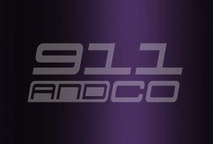 couleur porsche 911 996 Turbo code 3ae 39g violet violaperl metallic 2001