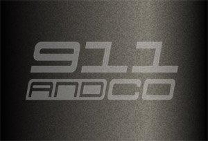 couleur porsche 911 996 Turbo code 744 746 noir schwarz 2001