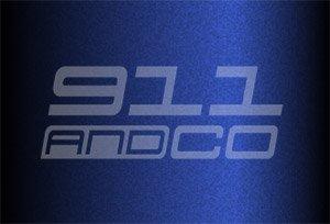 couleur porsche 911 996 code 39v 39n bleu iris irisblau 1999-2001