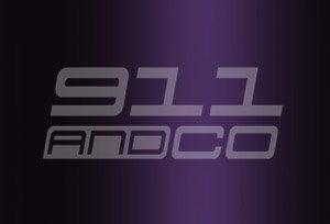 couleur porsche 911 996 code 3ae 39g violet violaperl metallic 1999-2001