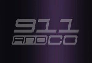 couleur porsche 911 996 code 3c4 3c5 violet style chrome violettchromaflair 2000
