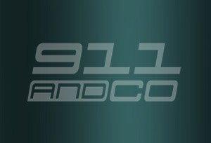 couleur porsche 911 996 code vert lago m6w lagogruen 2003-2004