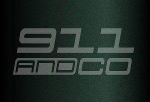 couleur porsche 911 996 code vert nephrite 2b4 22e gruen tannengruenmetallic 1999-2004
