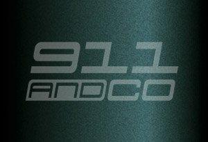 Porsche 911 G couleur peinture code 20c vert mousse moosgruen green metallic X2X2 X2V9