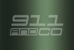 Porsche 911 G couleur peinture code 265 vert chene metallise oakgruen metallic oak green Y4Y4 Y4V9
