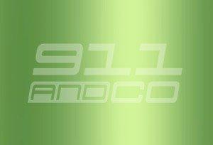Porsche 911 G couleur peinture code 275 vert lumiere metallise lindgruenmetallic green light metallic Y1Y1 Y1V9