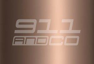 Porsche 911 G couleur peinture code 40B brun nougat nougat brown metallic_lm8v F4F4 F4V9