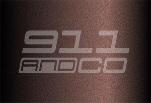 Porsche 911 G couleur peinture code 474 brun palissander rosewood metallic X7X7 X7V9
