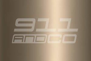 Porsche 911 G couleur peinture code 966 bronze clair hellbronze bright metallic R6R6 R6V9