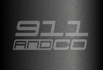 couleur peinture porsche 911 Caisse G gris ardoise 22d schiefergruen